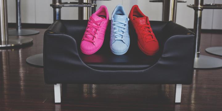 adidas_2_superstar_tonrabbit